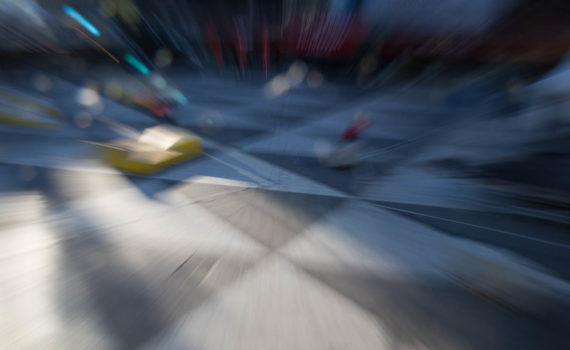 Torgskräck, tävlingsbild